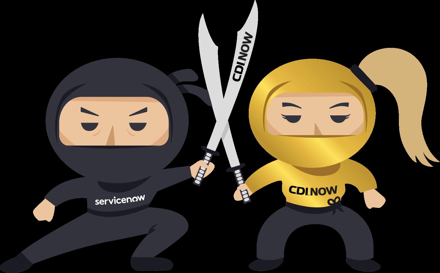 ServiceNow Ninjas